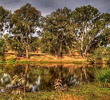 Wonga Magic - Wonga Wetlands, Albury NSW - The HDR Experience by Philip Johnson