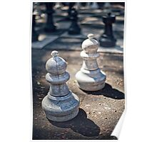 Pair of pawns Poster