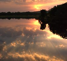 Ranthambore Sunset  #2 by Christopher Cullen