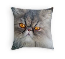 To err is human, to purr is feline.  ~Robert Byrne Throw Pillow