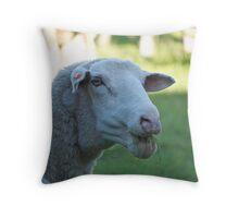 know a good dentist? Throw Pillow