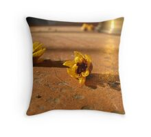 Signs of Spring in Rural Italy Throw Pillow