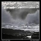 The Cruel Sea by John Dalkin