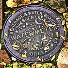 Water Meter, New Orleans, Louisiana by Christina Macaluso Hammock
