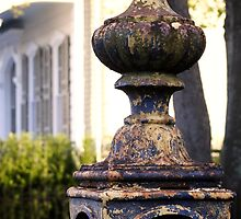Aging Fence, New Orleans, Louisiana by Christina Macaluso Hammock