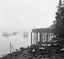 Bernard Harbor - Rolleicord 120 film camera by Patrick Downey