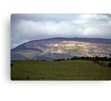 Irish Countryside scene Canvas Print
