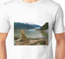 Natural Alaska Unisex T-Shirt