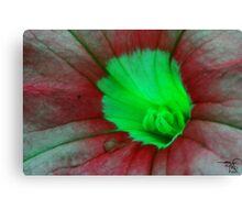 Floral macro-Pitunia Canvas Print