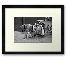 Trash Can Man 2 Framed Print