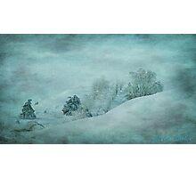 Blue Winter Photographic Print