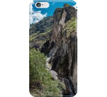 Leaping Tiger Offshoot iPhone Case/Skin