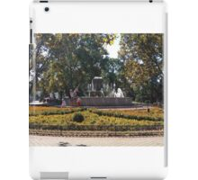 Sevastopol garden fountain  iPad Case/Skin