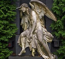 Guardian Angel by Lee d'Entremont