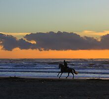 Horseback riding at sunset by annalisa bianchetti