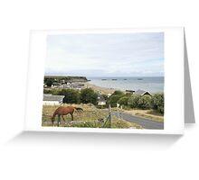 La Route a  Arromanches Greeting Card