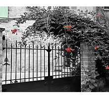 Blue Shutter Photographic Print