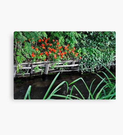 Red Stock Canvas Print