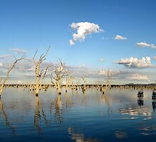 Stawell Flats by Steven  Sandner