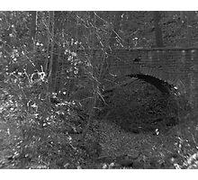 Bridge in the Ravine Photographic Print