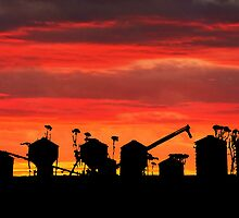 Sunset over wheat silos by Julia Harwood
