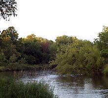 Upstream II by Anthony Roma