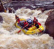 Rafting the Franklin River - Tasmania. by Alwyn Simple