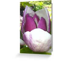 adorable flower Greeting Card