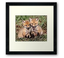 Laughing At The Photographer / Fox Kits Framed Print