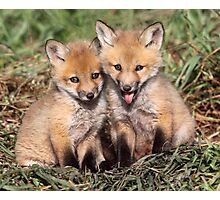 Laughing At The Photographer / Fox Kits Photographic Print