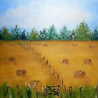 Hey Hay Its Summer by Beverley  Johnston