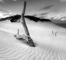 Carlow Sandblow B&W by Adam Gormley