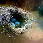 Nest Two   by Leslie Guinan