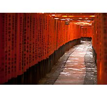 Ten Thousand Gates Photographic Print