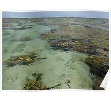 110309 Lady Elliot Island Reef Lagoon 2 Poster