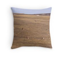 Prairie dots Throw Pillow
