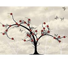* butterfly tree * Photographic Print