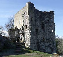 Peveril Castle by ANDREW BARKE