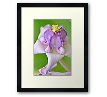 She and the crown... Framed Print