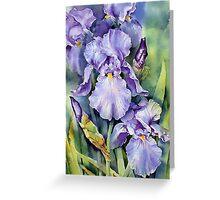Dewdrop Irises Greeting Card