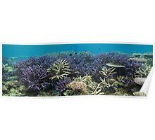 Rossel Island Lagoon Poster