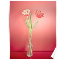 Tabletop Tulips Poster