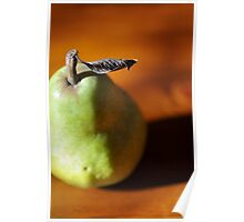 pear study IV Poster
