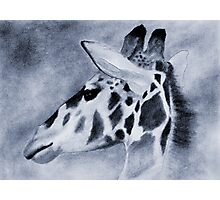 THE GIRAFFE Photographic Print