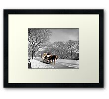 Central Park, Handsome cab ride. Framed Print