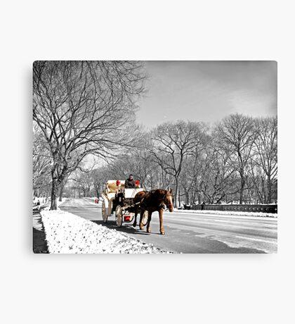Central Park, Handsome cab ride. Canvas Print
