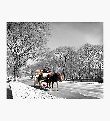 Central Park, Handsome cab ride. Photographic Print