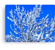 Snowflaks kling to twigs behind their wind-shadow Canvas Print