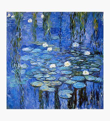 water lilies a la Monet Photographic Print