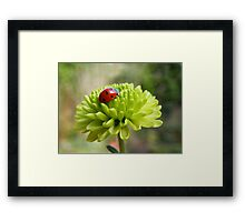 Irish luck Framed Print